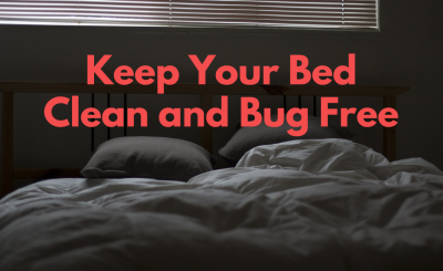 Keep Your Bed Clean and Bug Free
